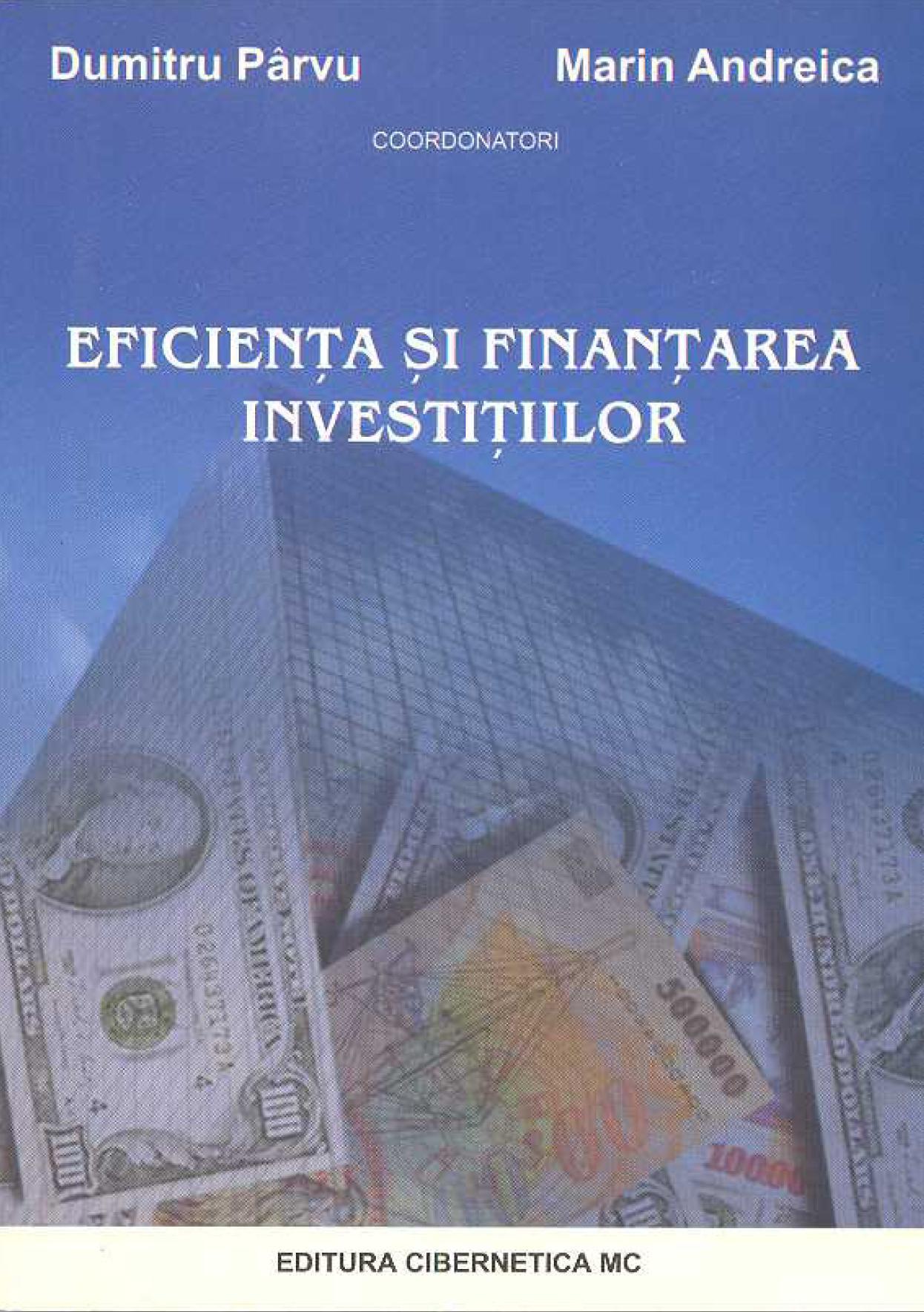 Detalii: Eficienta si finantarea investitiilor